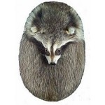 Raccoon, Head on Sporran